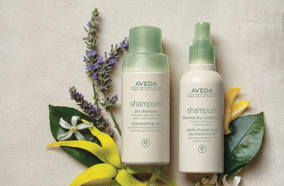 Aveda Dry Shampoo Dry Conditioner at Indira Salon Chicago